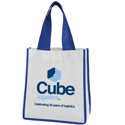 Best Sale Promotional high quality shopping bag